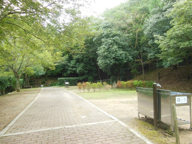 森よこ1と2入口(640)