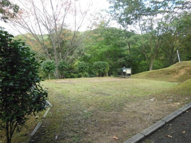 森よこ5(640)
