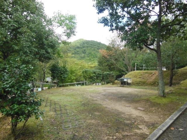 森よこ6(640)