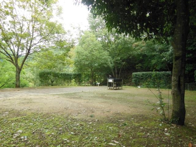 森よこ2(640)