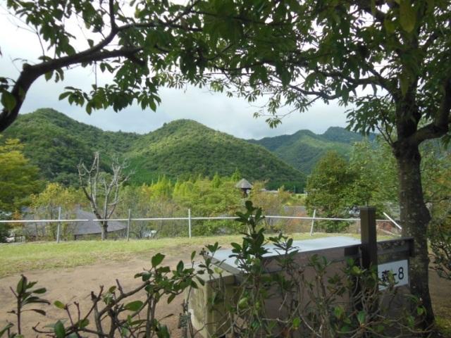 森よこ8(640)