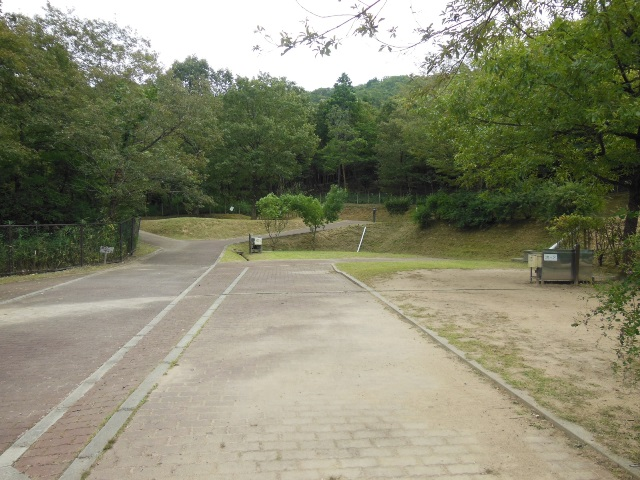 池よこ2(640)
