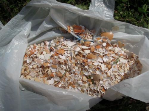 肥料 玉ねぎの殻