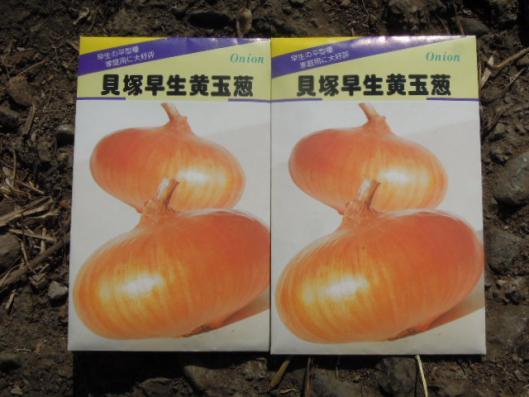 玉葱の追加玉ねぎ 貝塚早生黄玉葱