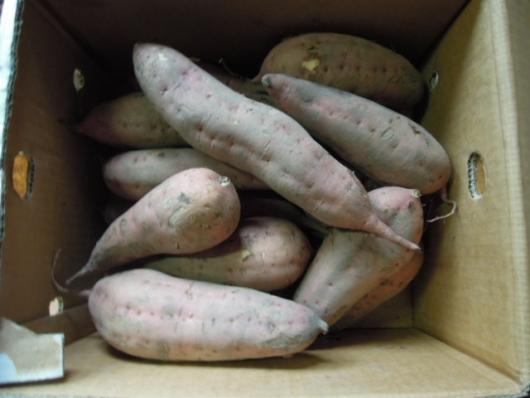 安納芋 販売 無農薬有機野菜