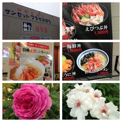2013.7.18道の駅1