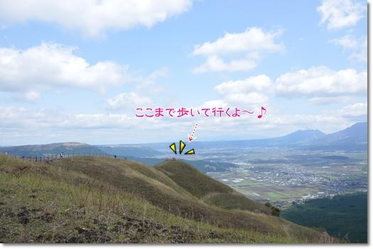 DSC_5374.jpg