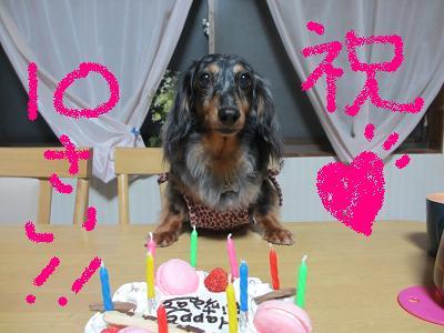 10歳のお誕生日おめでとう!