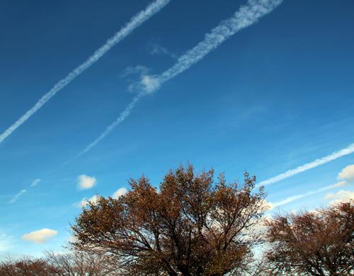2013秋の風景 009