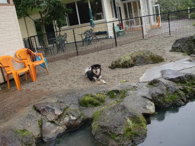 プールがあるお宿に泊まりました