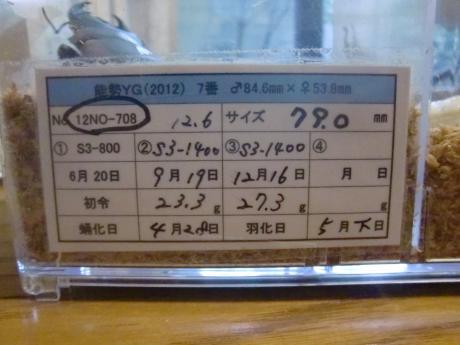 79mm 管理表