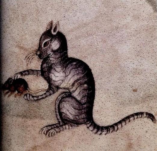 medieval-cat-522x500.jpg