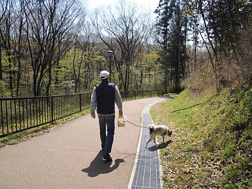 4月13日 散歩3