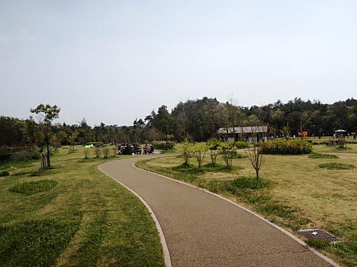 4月15日 防災公園 (2)