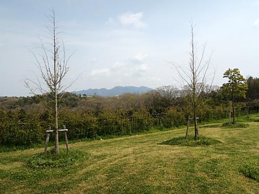 4月15日 防災公園