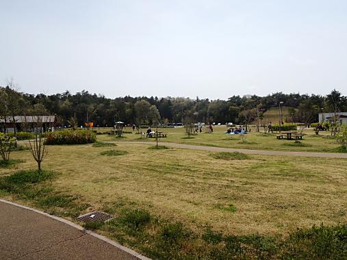 4月15日 防災公園2