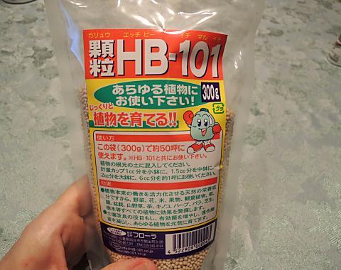 6月16日 HB101
