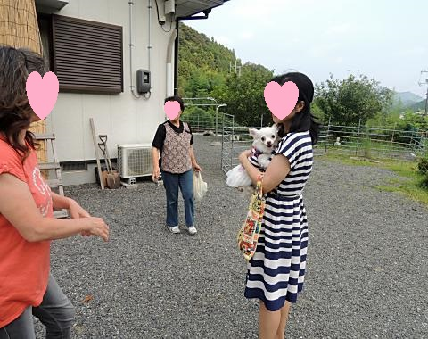 8月20日 くーちゃん家