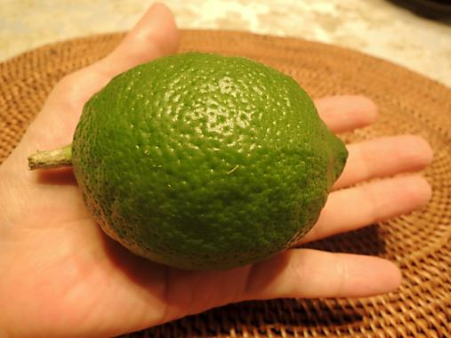 10月6日 レモン
