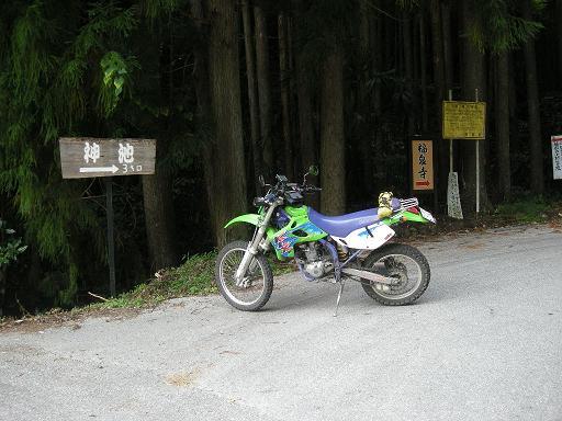 DSCN7134.jpg
