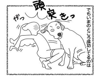 羊の国のラブラドール絵日記シニア!!「チューまでの道のり」4