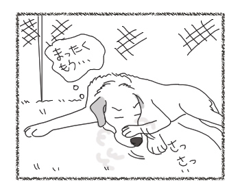 羊の国のラブラドール絵日記シニア!!「風上におく」2