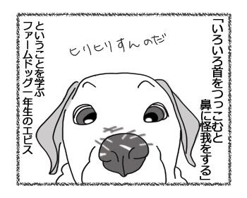 羊の国のラブラドール絵日記シニア!!「首を突っ込みすぎると」4