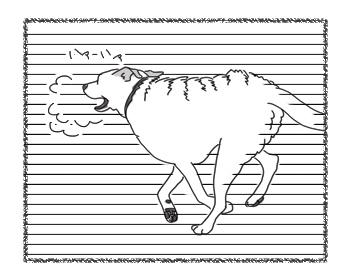 羊の国のラブラドール絵日記シニア!!「クロエちゃんの夢」2