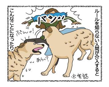 羊の国のラブラドール絵日記シニア!!「クロエとエビスと保険のハナシ」4