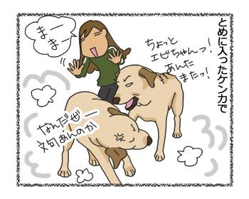 羊の国のラブラドール絵日記シニア!!「クロエとエビスと保険のハナシ」5
