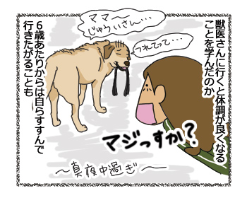 羊の国のラブラドール絵日記シニア!!「あの手この手」7
