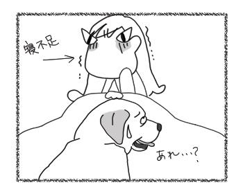 羊の国のラブラドール絵日記シニア!!「責任はとれません」4