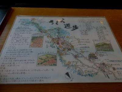 奈良・吉野「柿の葉寿司やっこ」3