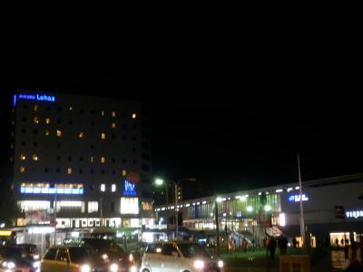 奈良「スーパーホテル奈良Lohas」1