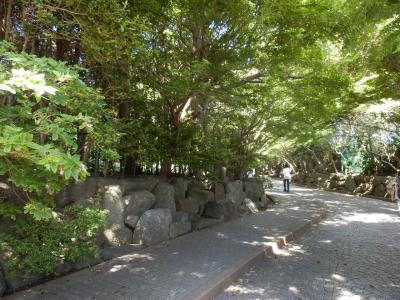 鎌倉「食事喫茶ほいほいと鎌倉文学館」5