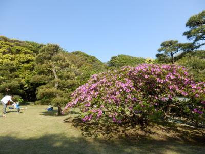鎌倉「食事喫茶ほいほいと鎌倉文学館」11