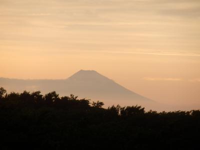 伊豆大島・三原山温泉「大島温泉ホテル」4