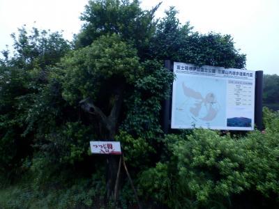 伊豆大島・三原山温泉「大島温泉ホテル」13