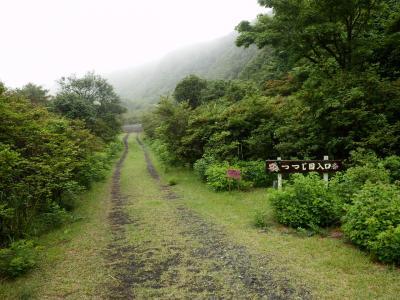 伊豆大島・三原山温泉「大島温泉ホテル」14