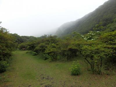 伊豆大島・三原山温泉「大島温泉ホテル」15