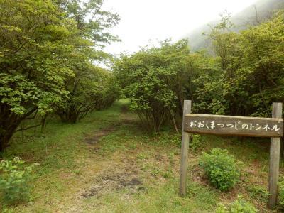 伊豆大島・三原山温泉「大島温泉ホテル」16