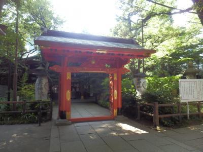 虎ノ門「KIRIN一番絞りガーデン」9