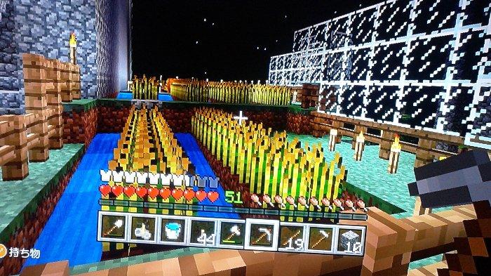 拠点下横に畑を作りました。小麦、スイカ、かぼちゃ