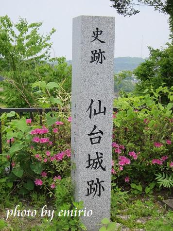 0610仙台2