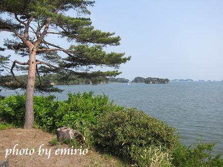 0613松島8