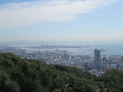 市章山から大阪方面