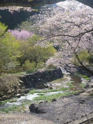 白金平から宿谷の滝へ_201304