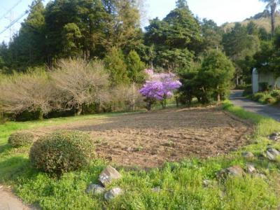 鎌北湖から毛呂山総合公園へ_201304