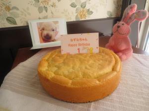 なずなバースデーケーキ