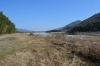 吉野川河原